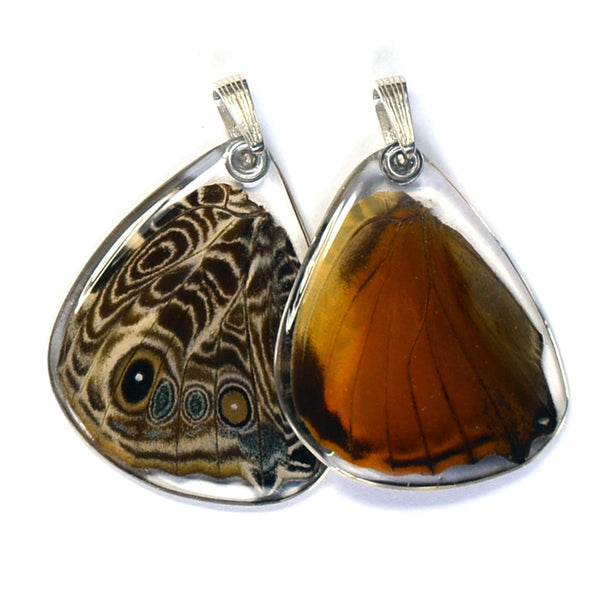 Butterfly Pendant Only, Bromfild's Beauty Butterfly, Bottom Wing