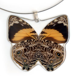 Whole Butterfly Pendant Only, SS bail, Bromfild's Beauty Butterfly