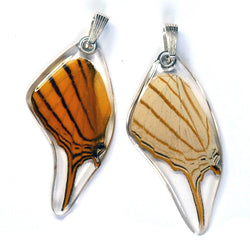 Butterfly Pendant Only, Orange Daggerwing, Bottom Wing