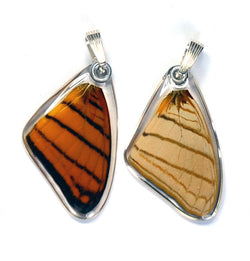 Butterfly Pendant Only, Orange Daggerwing, Top Wing