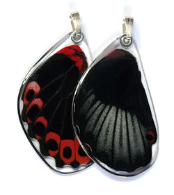 Butterfly Pendant Only, Scarlet Mormon, Bottom Wing