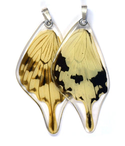 Butterfly Pendant Only, Flying Handkerchief Swallowtail, Bottom Wing