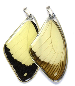 Butterfly Pendant Only, Flying Handkerchief Swallowtail, Top Wing