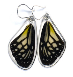 Butterfly Earrings, Yellow Glassy Tiger, Top Wing