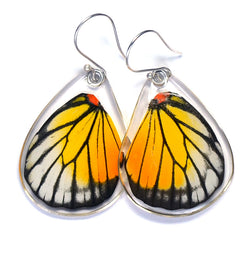 Butterfly Earrings, Red Spot Sawtooth, Bottom Wing
