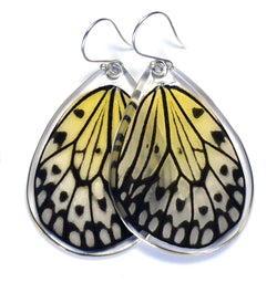 Butterfly Earrings, Paper Kite Butterfly , Bottom Wing