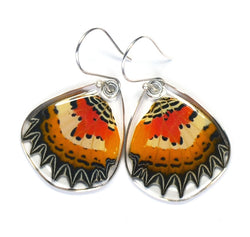 Butterfly Earrings, Malay Lacewing, Bottom Wing