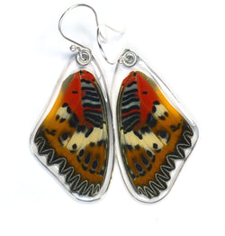 Butterfly Earrings, Malay Lacewing, Top Wing