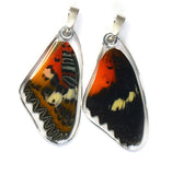Butterfly Pendant Only, Malay Lacewing, Top Wing