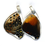 Butterfly Pendant Only, Shining Red Charaxes, Bottom Wing