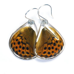 Butterfly Earrings, Pallas' Fritillary, Bottom Wing