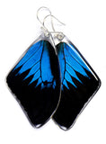 Butterfly Earrings, Mountain Blue Swallowtail, Top Wing