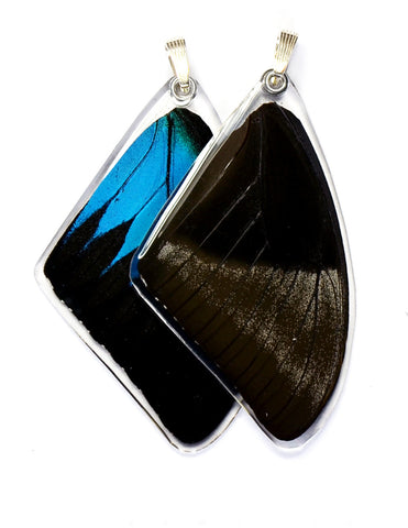 Butterfly Pendant ONLY, Mountain Blue Swallowtail, Top Wing