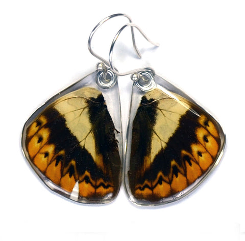 Butterfly Earrings, Herminia Glider, Bottom Wing