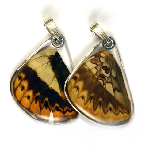 Butterfly Pendant Only, Herminia Glider, Bottom Wing