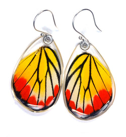 Butterfly Earrings, Painted Jezabel, Bottom Wing