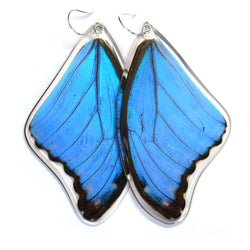 Butterfly Earrings, Giant Blue Morpho, Top Wing