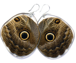 Butterfly Earrings, Owl Butterfly, Bottom Wing