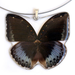 Whole Butterfly Pendant, Archduke Butterfly