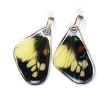 Butterfly Wing Pendant Only, Day Flying Moth, Bottom Wing