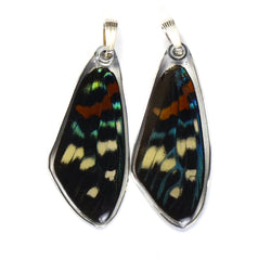 Butterfly Wing Pendant Only, Day Flying Moth, Top Wing