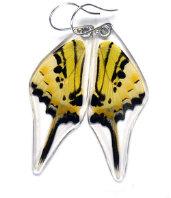 Butterfly Earrings, Five Bar Swallowtail, Bottom Wings