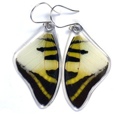Butterfly Earrings, Five Bar Swallowtail, Top Wings