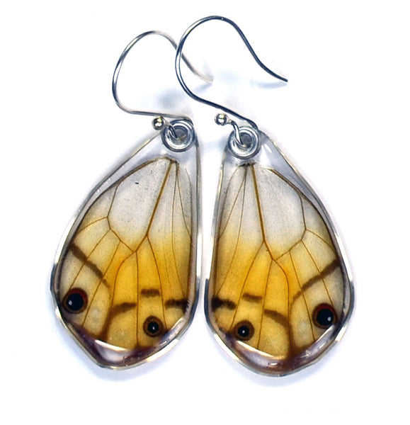 Butterfly Earrings, Amber Phantom, Bottom Wings