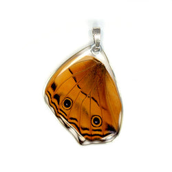 Butterfly Pendant Only, Cramer's Cruiser, Bottom Wing