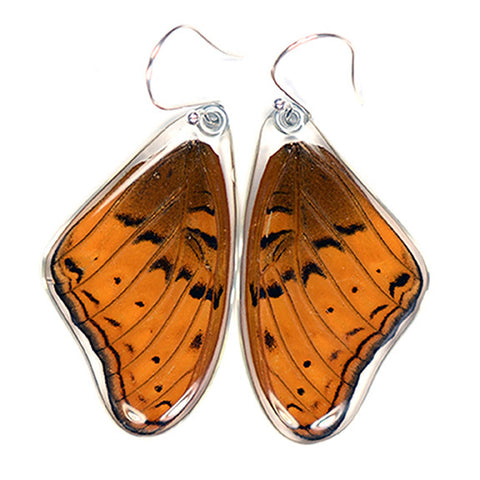 Butterfly Earrings, Cramer's Cruiser, Top Wings