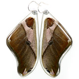 Butterfly earrings, Caligula Simla, top wings