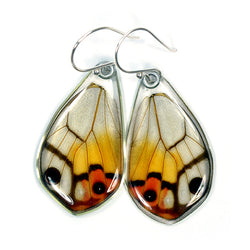 Butterfly Wing Earrings, Amber Phantom, bottom wings