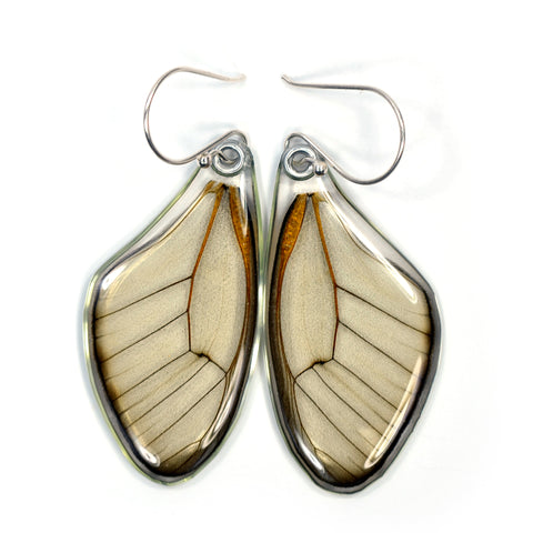 Butterfly Wing Earrings, Amber Phantom, top wings