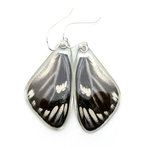 Butterfly earrings, Red Spot Jezebel Butterfly, top wings