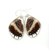 0565 Butterfly earrings, White-barred Emperor Butterfly, bottom wings