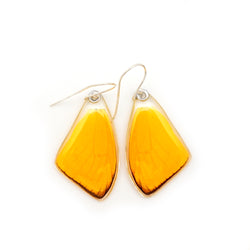 0571 Butterfly Wing Earrings, Apricot Sulphur, top wings