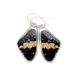 0580 Real Butterfly earrings, Red Cracker butterfly, top wings
