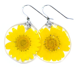 66003 Classic yellow daisy earrings