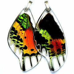 BU-0055-B-PE<BR>Butterfly wing pendant ONLY, Sunset butterfly, bottom wing