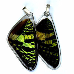 BU-0055-T-PE<BR>Butterfly wing pendant ONLY, Sunset butterfly, top wing