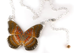 Whole Butterfly Necklace, Cethosia Biblis Biblis