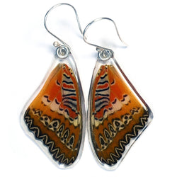 Butterfly earrings, Cethosia Biblis Biblis, top wings
