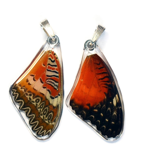Butterfly wing pendant ONLY, Cethosia Biblis Biblis, top wing