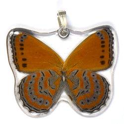 BU-0345-WP<BR>Whole Butterfly Pendant, Shimmery Lavender Butterfly
