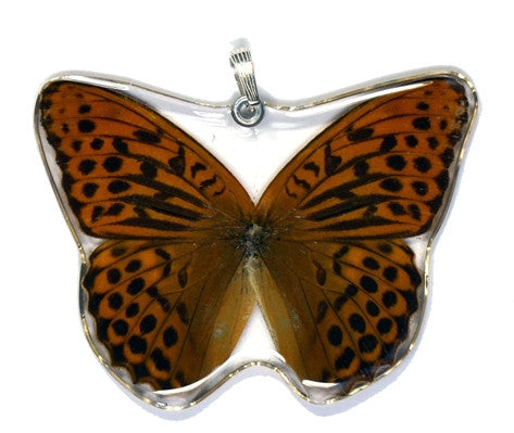BU-0385-WP<BR>Whole Butterfly Pendant, Pallas' Fritillary