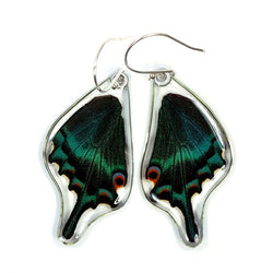 BU-0515-B-ER<BR>Butterfly Earrings, Alpine Black Swallowtail, Bottom Wings