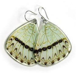 BU-0530-B-ER<BR>Butterfly earrings, Mint Morpho Butterfly, bottom wings