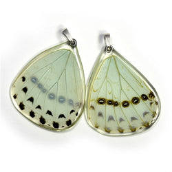 BU-0530-B-PE<BR>Butterfly wing pendant ONLY, Mint Morpho Butterfly, bottom wing