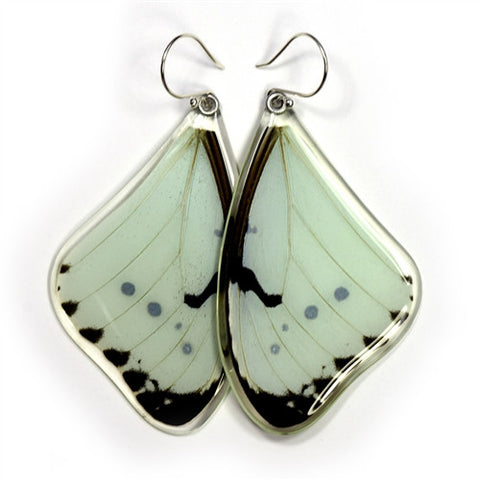 BU-0530-T-ER<BR>Butterfly earrings, Mint Morpho Butterfly, top wings