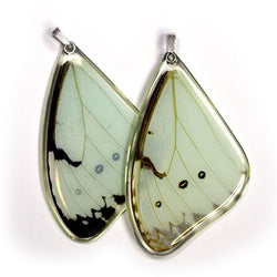 BU-0530-T-PE<BR>Butterfly wing pendant ONLY, Mint Morpho Butterfly, top wing